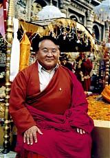 medium_masters-sogyalrinpoche-bodhgaya-bodhitree