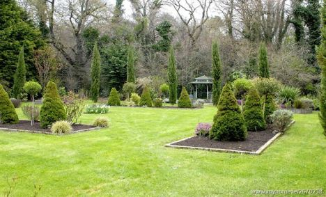 Rear garden 2_l