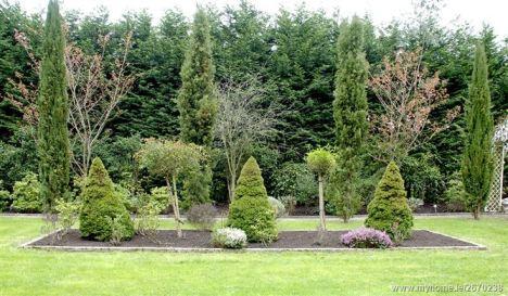 Rear garden 3_l