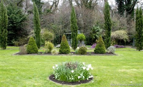 Rear garden 4_l