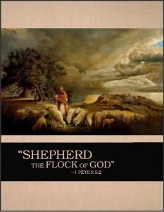 ShepFlockGod-cover-233x300