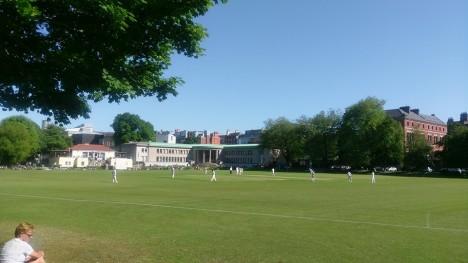 TCD cricket